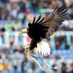 La Lazio ha sospeso l'addestratore dell'aquila Olympia per aver inneggiato al Duce